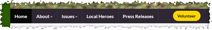 Screenshot showing WordPress website menu with button item